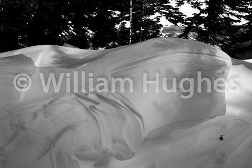 20170130-Emerald Lake Hike Snow-736