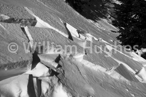 20170130-Emerald Lake Hike Snow-1321