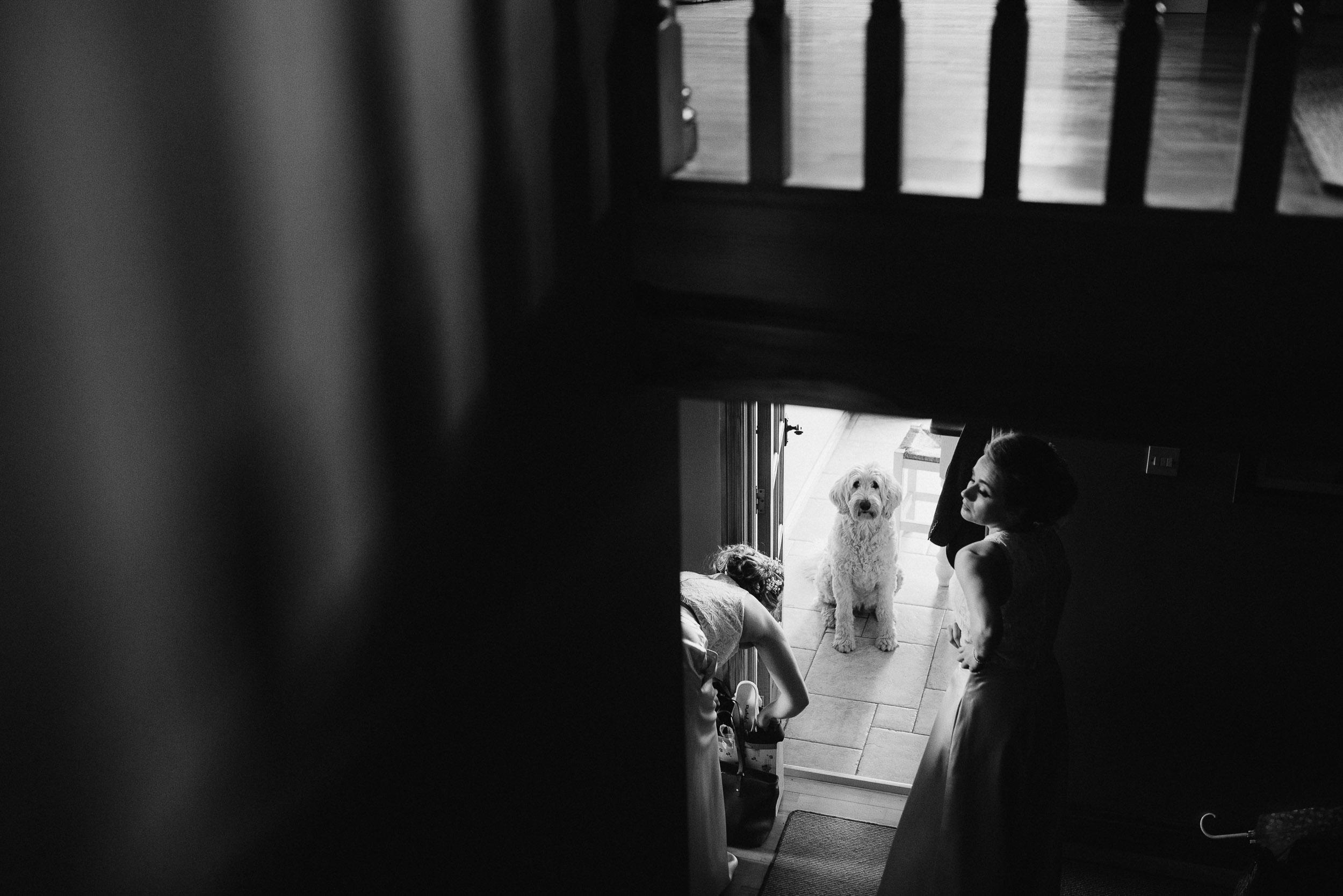 newcastle wedding northern ireland-59.jpg