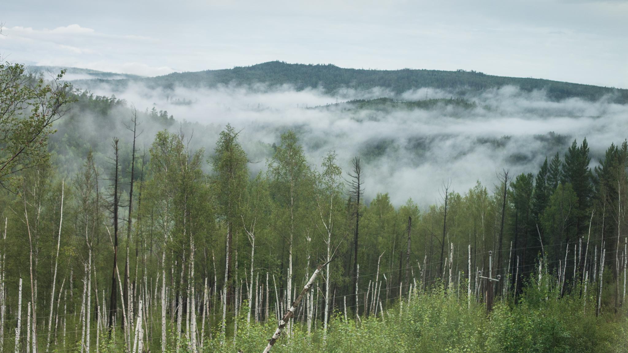 views-from-trans-siberian_010.jpg