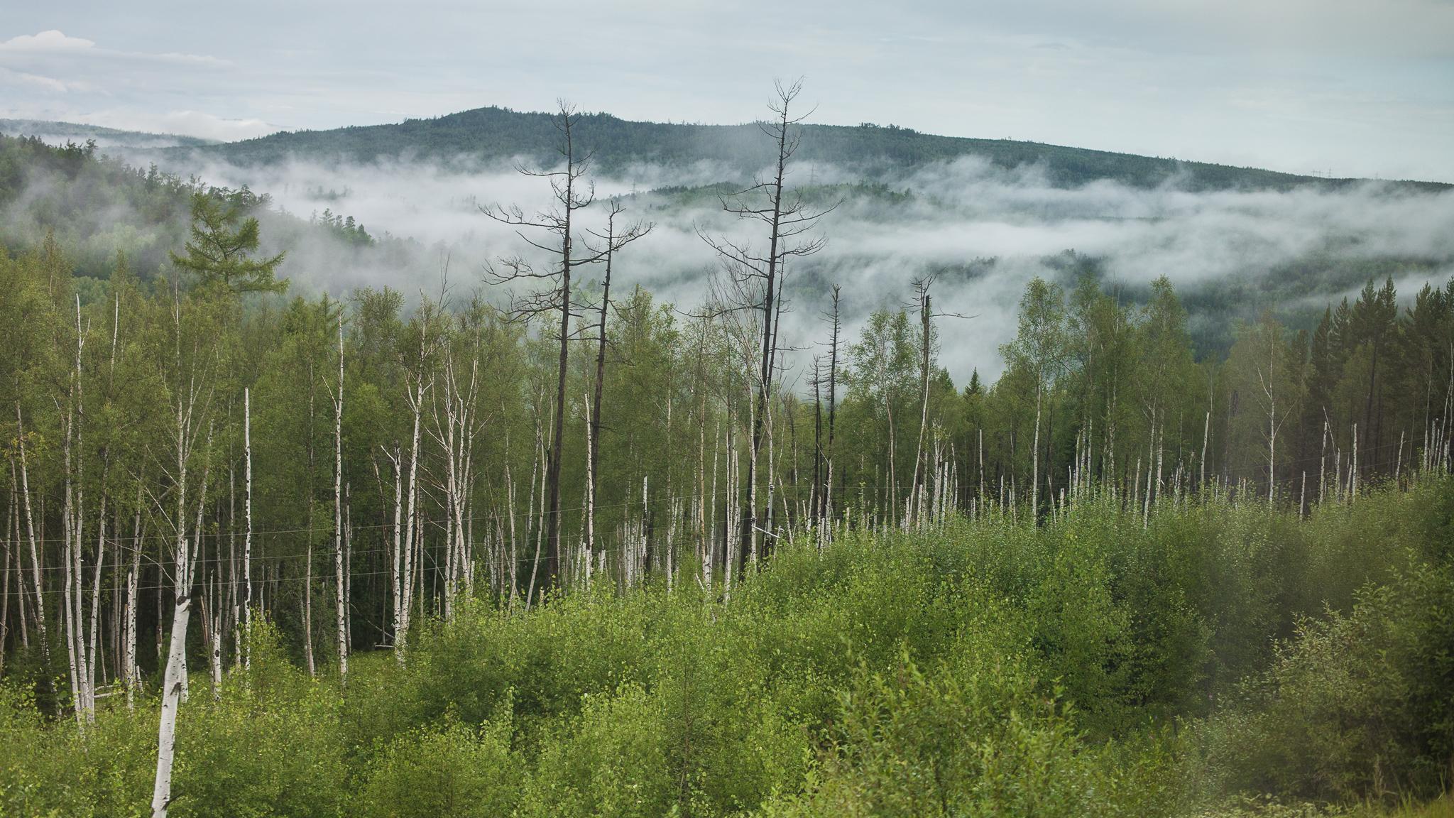 views-from-trans-siberian_011.jpg