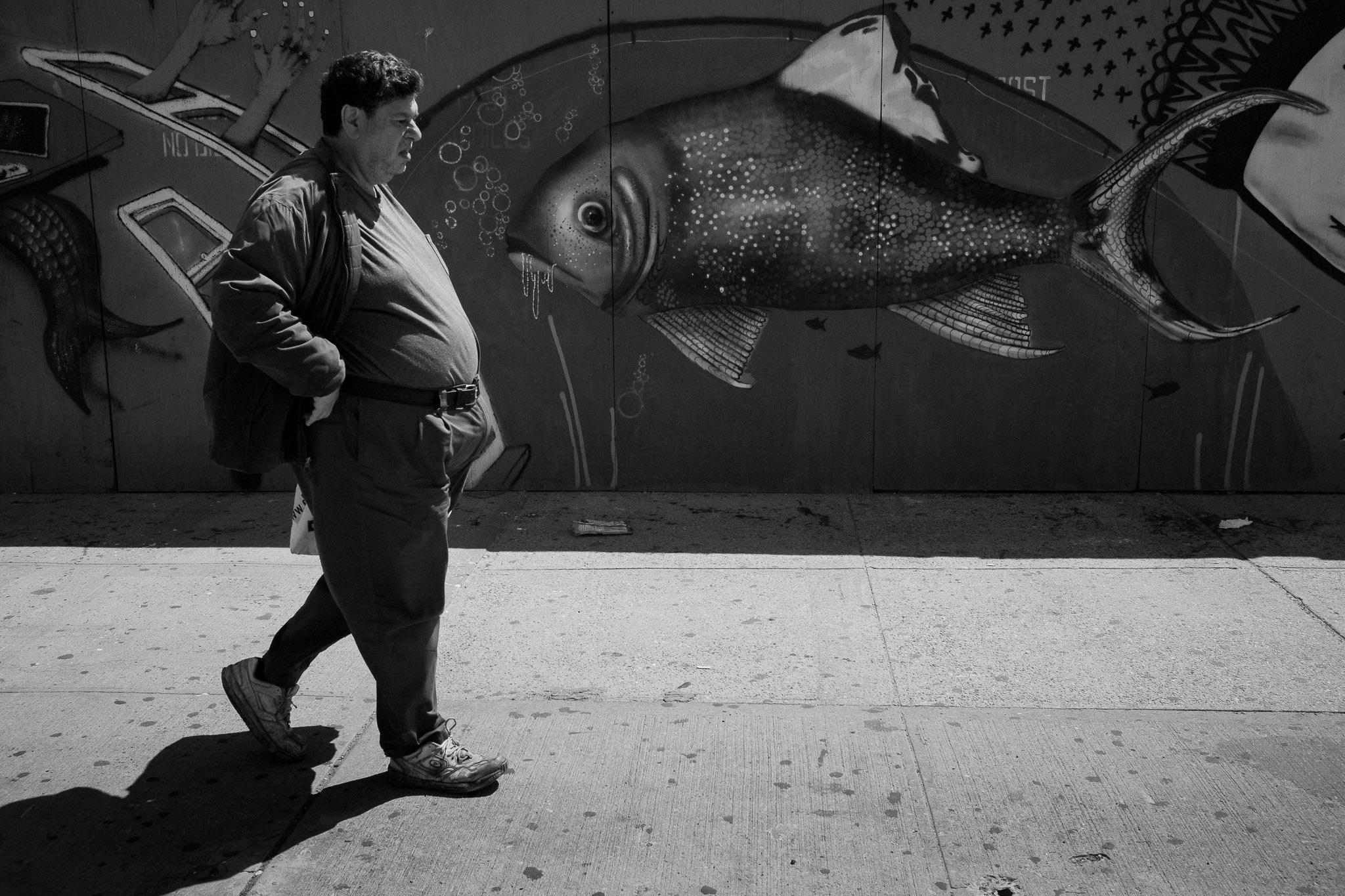 man vs. fish