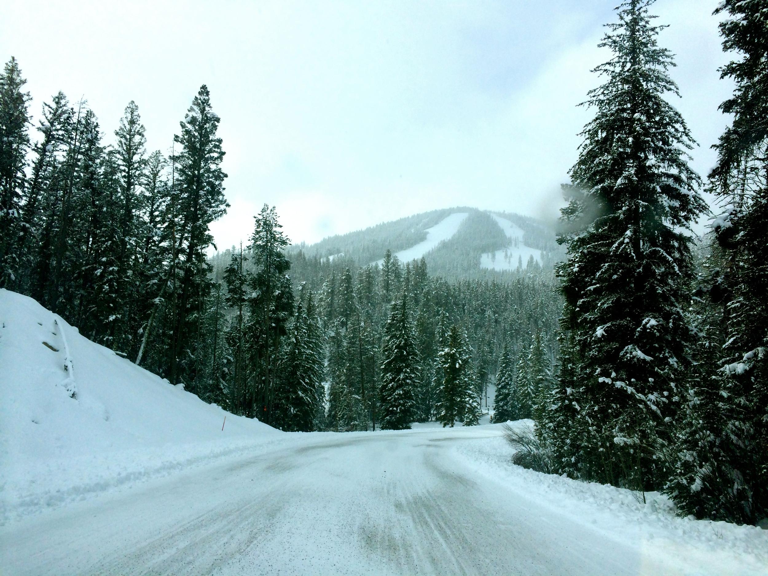 Near Jackson, Montana
