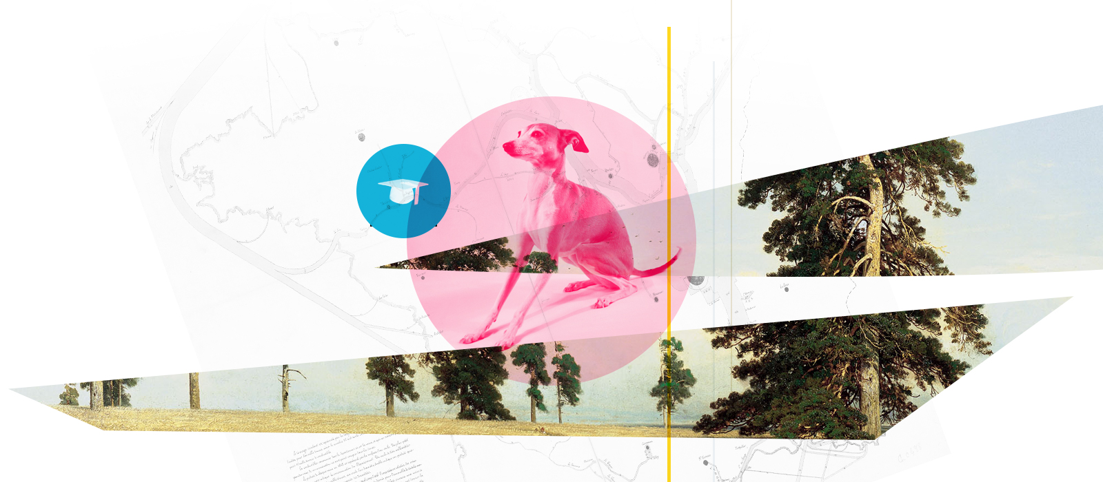 2019-09-10-designer-pedigree.jpg