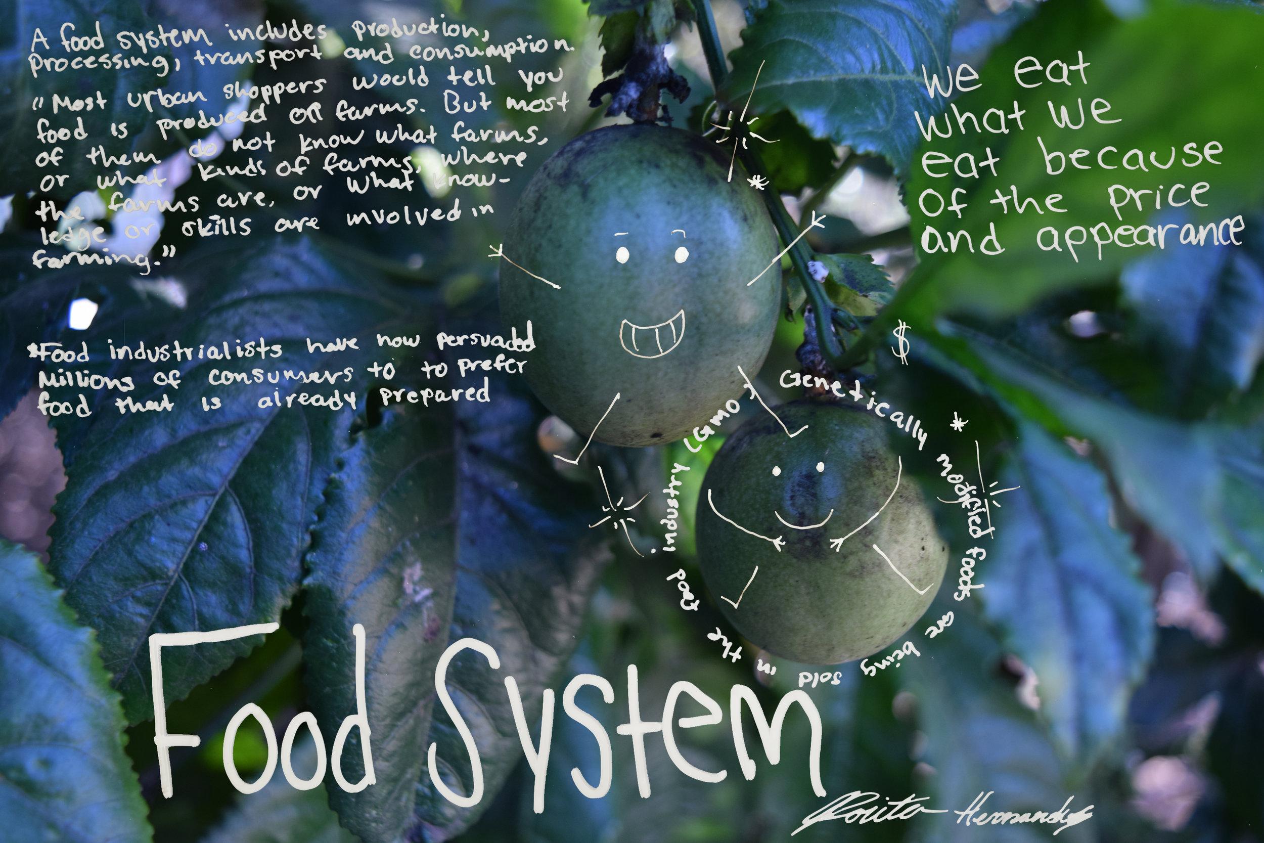 170301_SnapShot_Sp17_foodjustice_Rosita.jpg