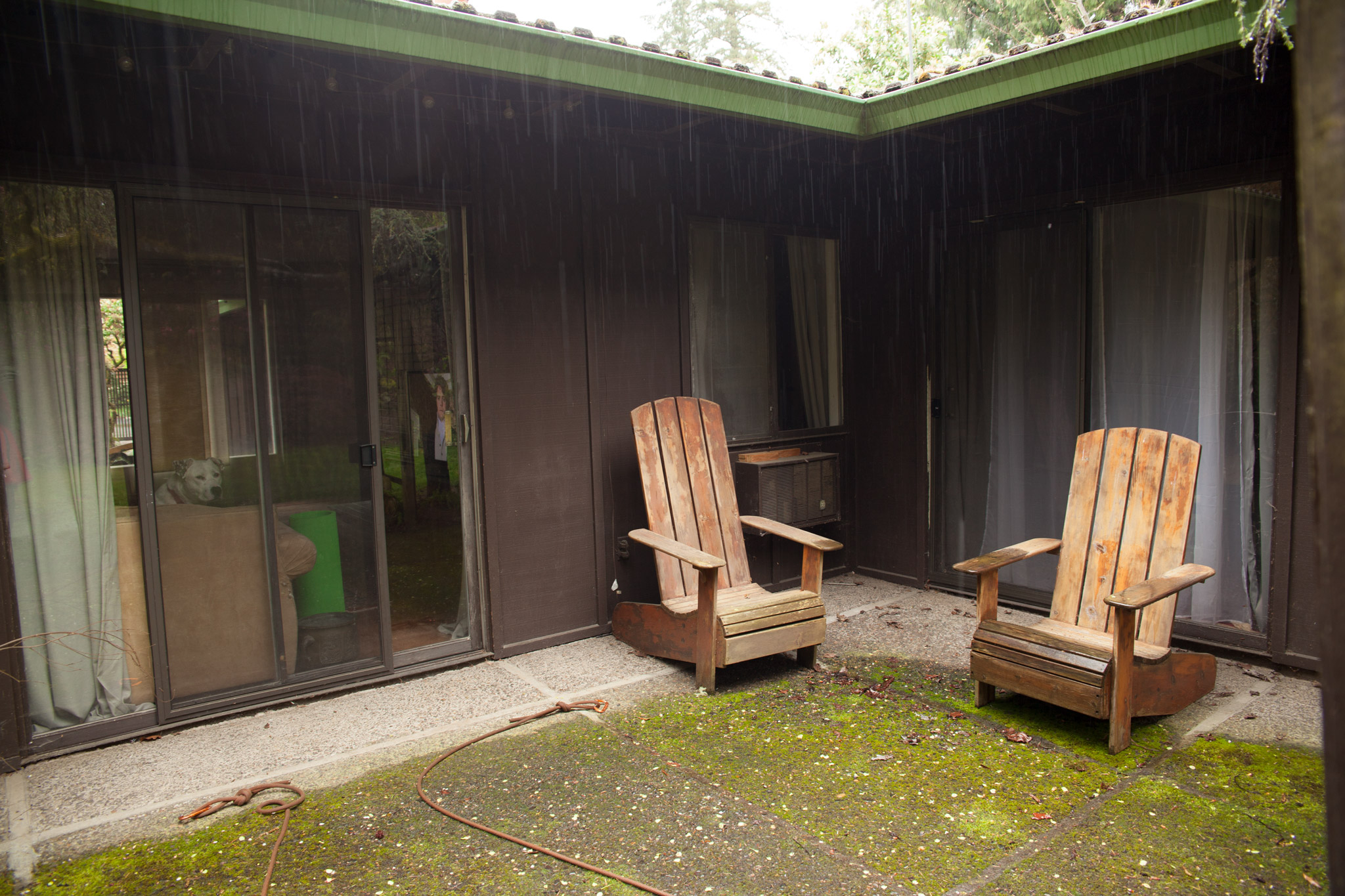 Exhibit C: Back porch before...(how much is that doggy in the window?)