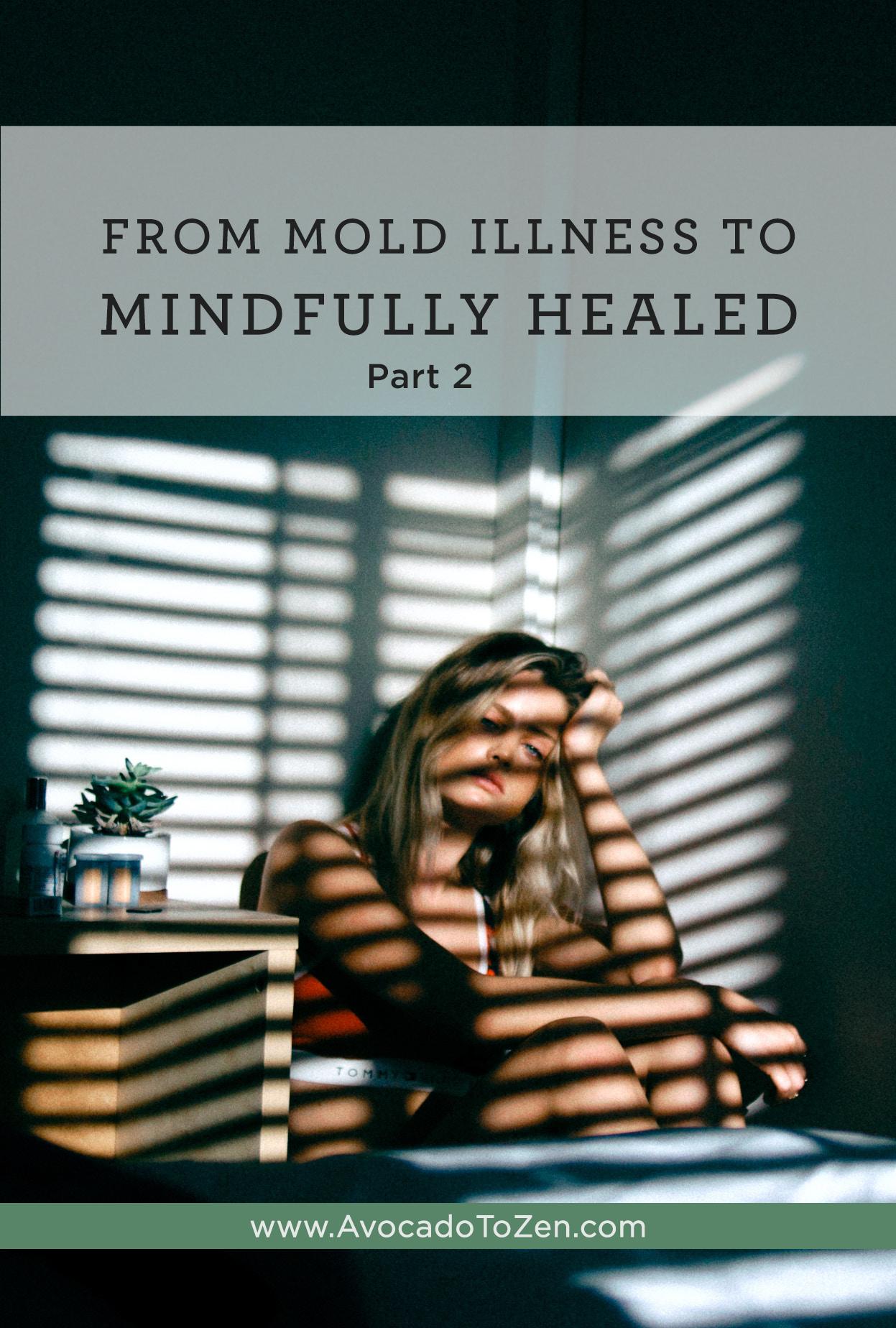 mold illness to mindfully healed