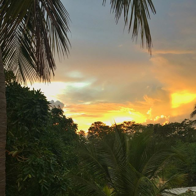 Sunrise @elephantroad_surfcamp  #sunrise #arugambay #surf #yoga #srilanka