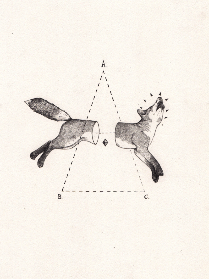 Fox Bisect