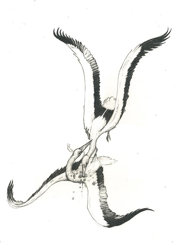 The Storks