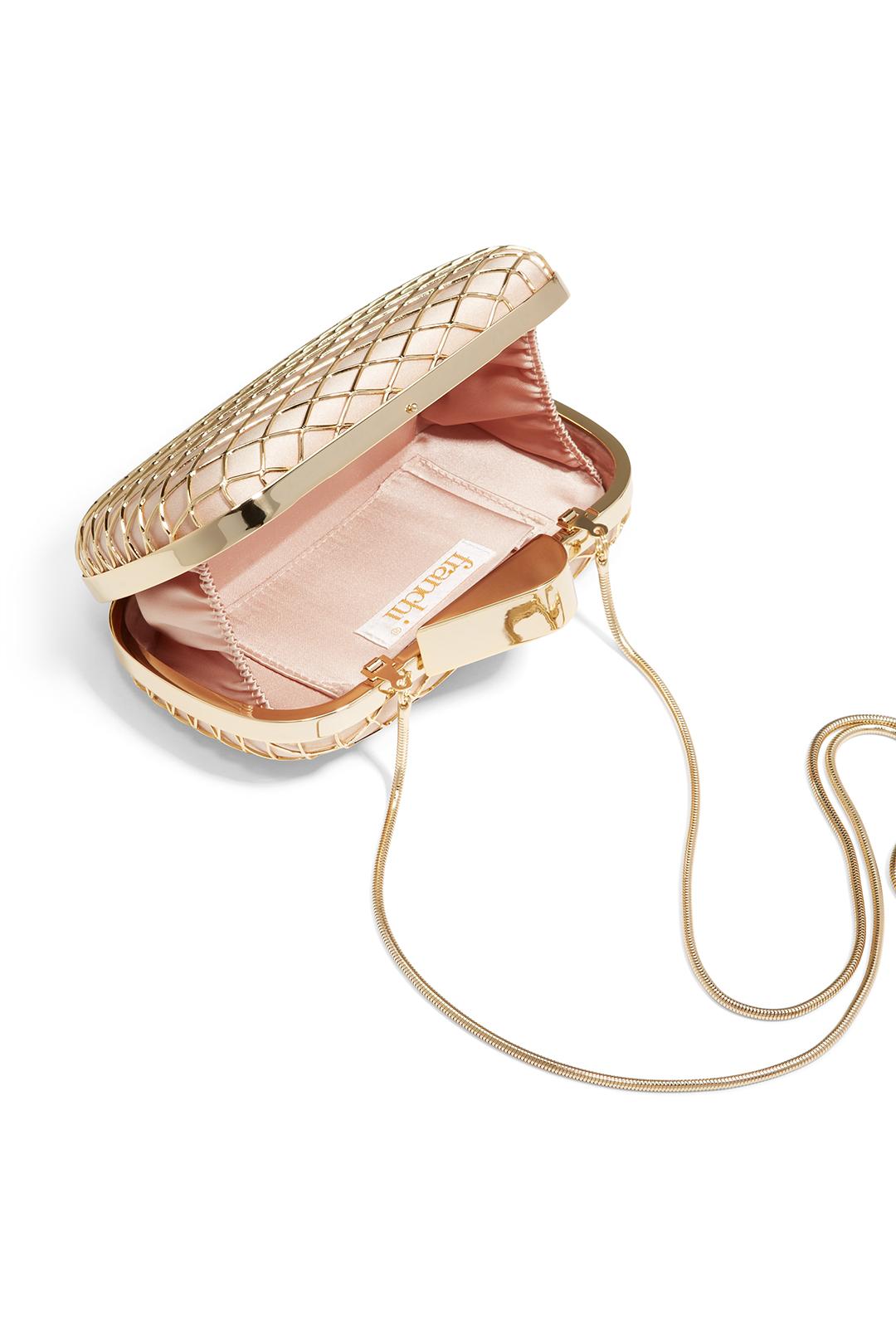 handbag_franchi_champagne_cage_clutch_detail1_1.jpg