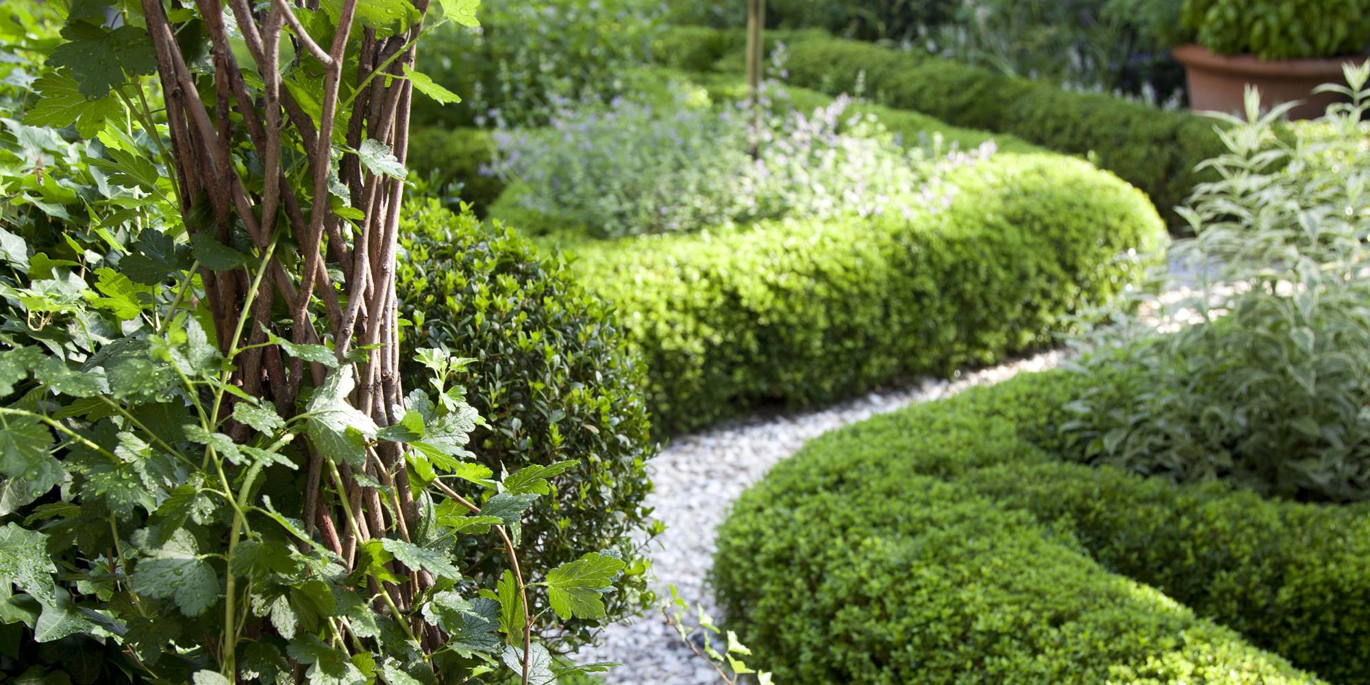 country-garden-path-index-image.jpg