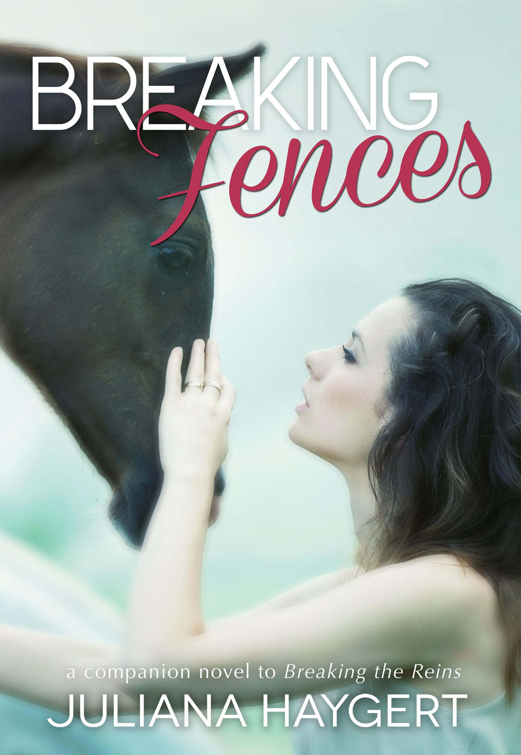 Breaking Fences - front.jpg