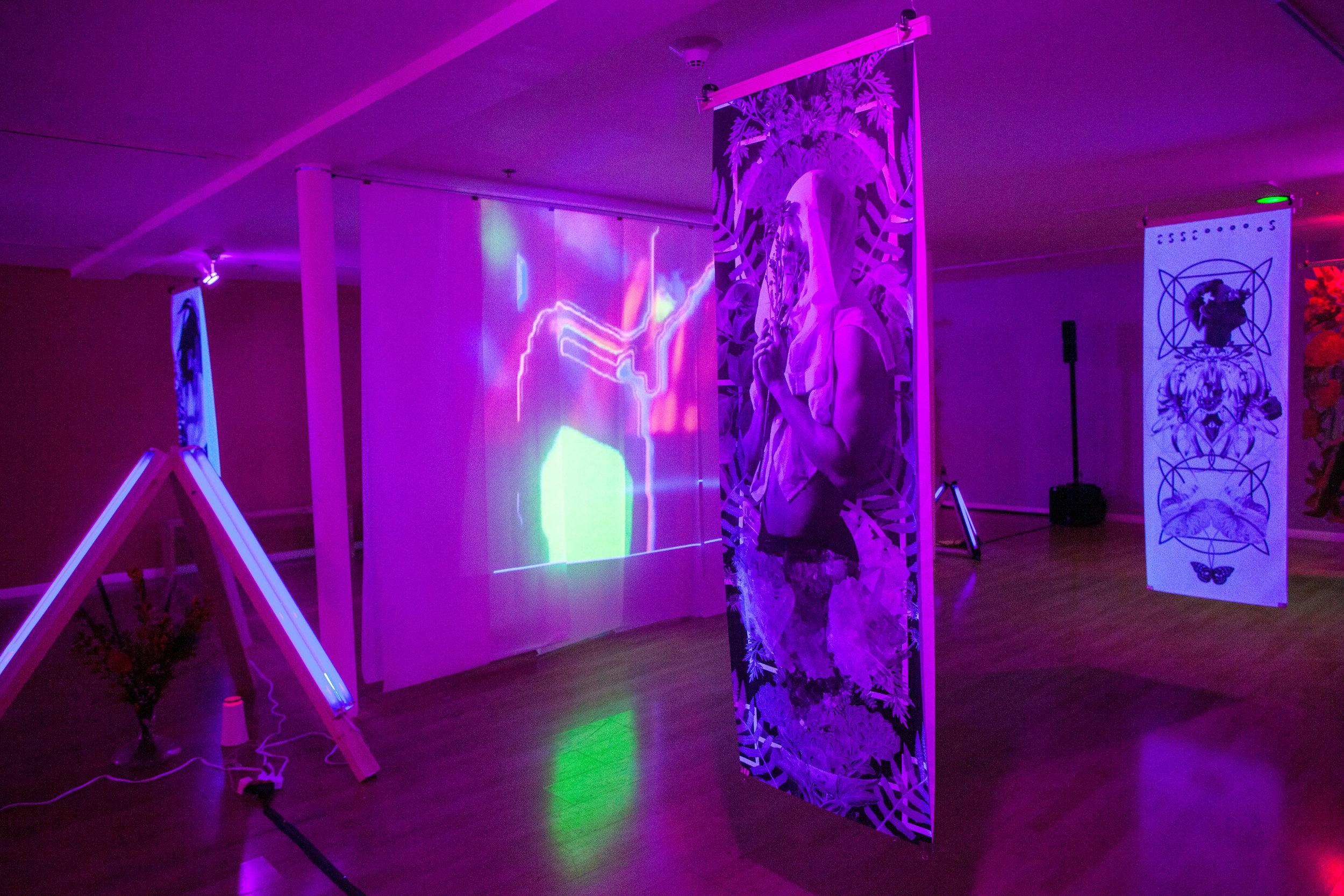 essentials_biochromatic_exhibition_1.jpg