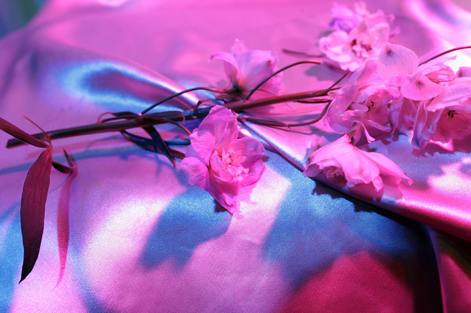 Silkclub_flower_sq.jpg