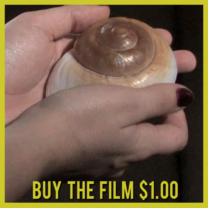Seashell Purchase buttons.jpg
