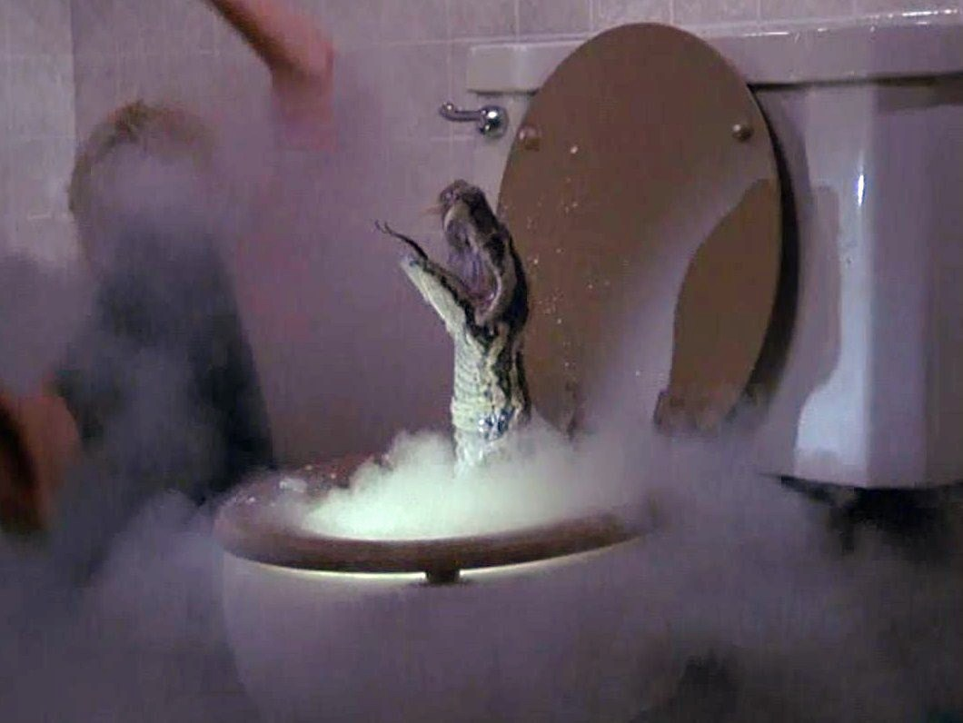 #ToiletSnake