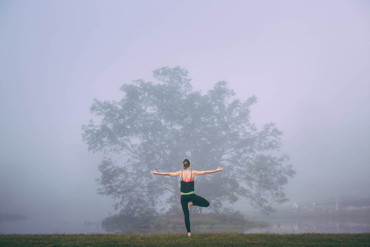 Find some mist and take some photographs of a friend doing Vrksasana (Tree pose) in front of a tree...