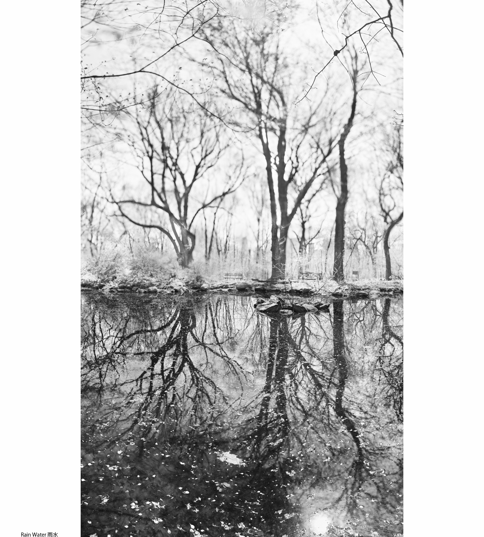 1Spring_2_Rain Water1.jpg