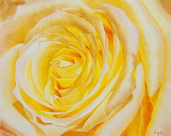 rose_3.jpg