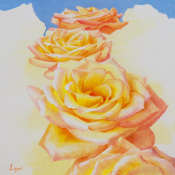 rose_7.jpg