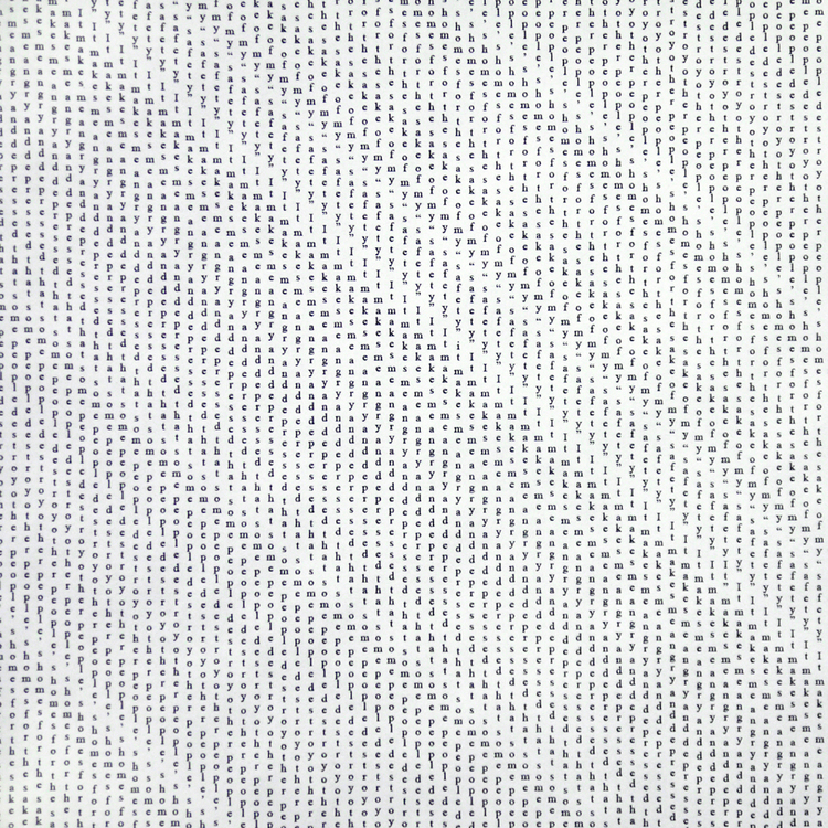 detail of Straight Twill