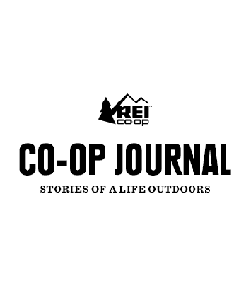 """"""" My Kids Turned Me Into an Electric Bike Convert """" — A cycling purist discovers the beauty of electric bikes while towing her two kids—and all their stuff—around town.   REI Co-op Journal, June 2019"""