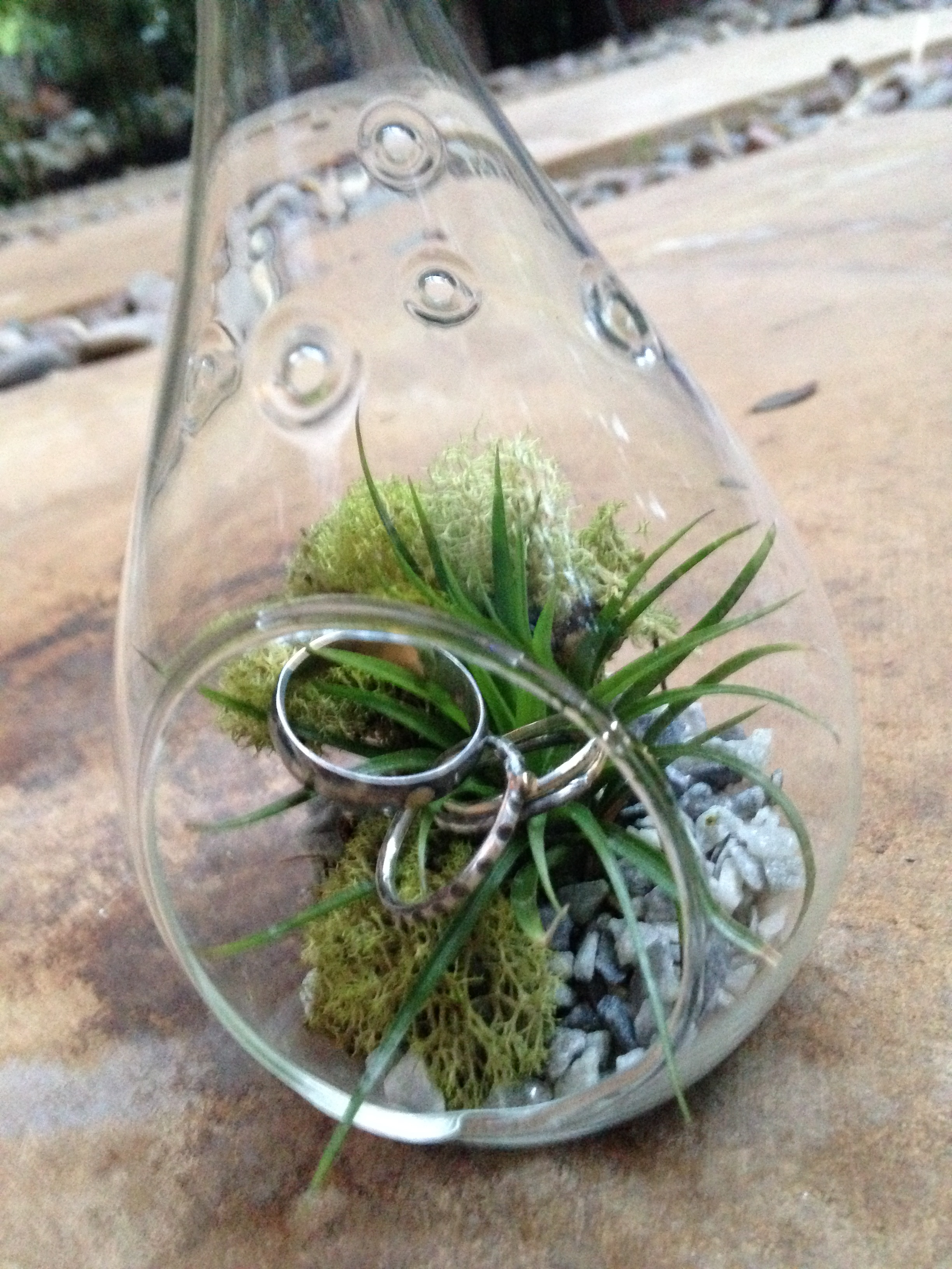 Presented them their rings in this mini-terrarium!