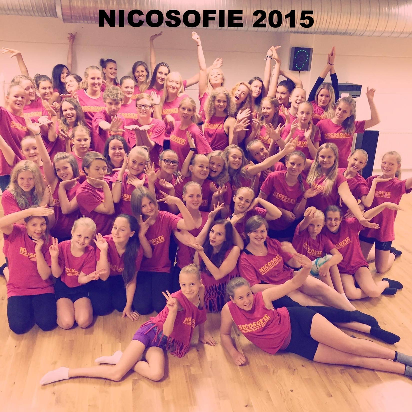 Gruppbild NICOSOFIE 2015 stora.jpg