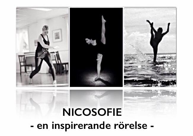 NICOSOFIE 2016