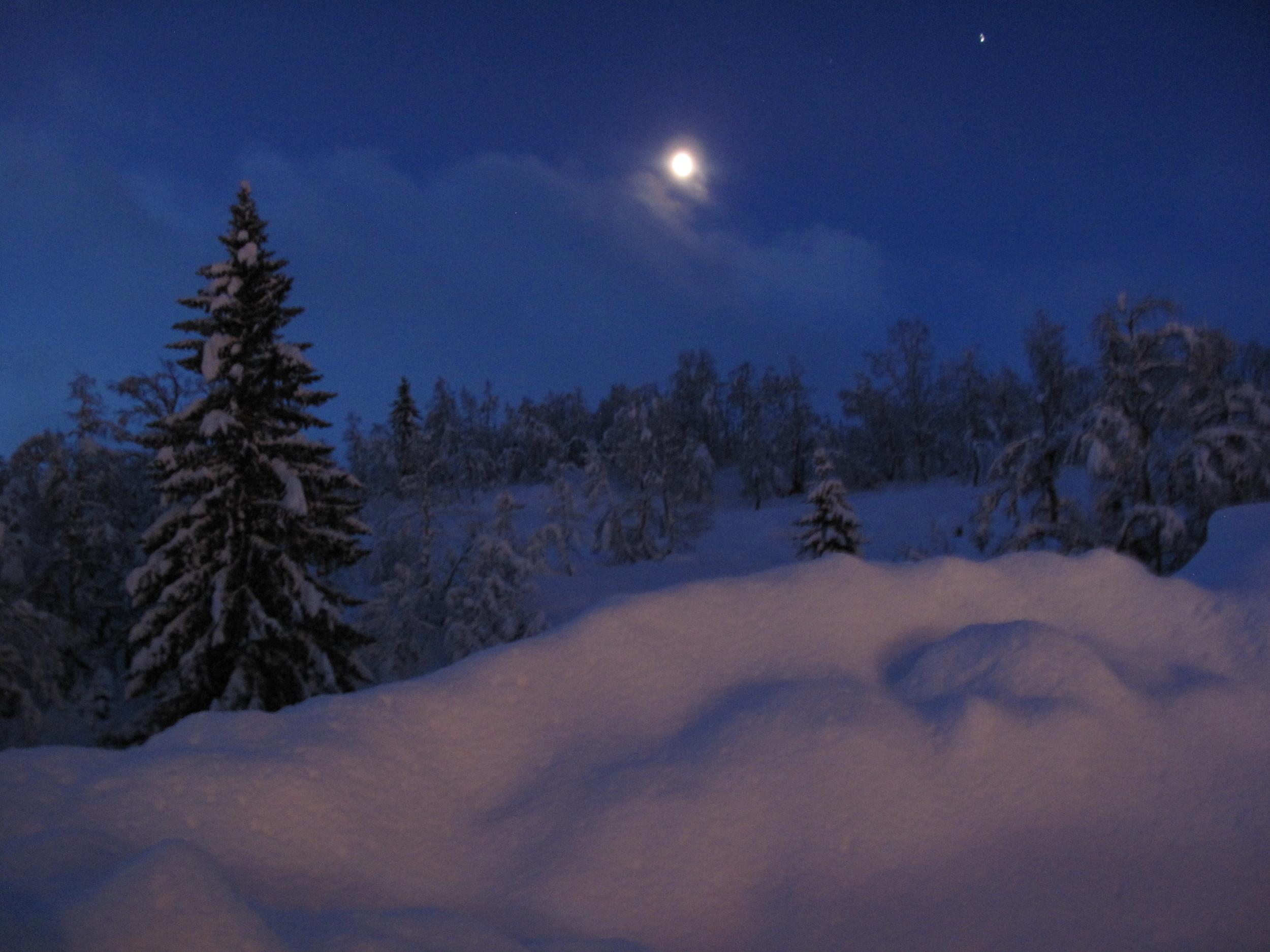 God Kveld fra Hodlekve