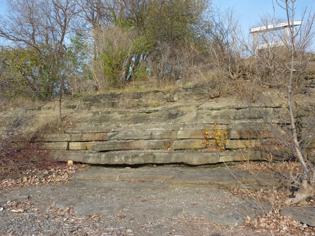 Section of Gull River Formation limestone at Westboro Beach. Stromatolites can be found in the bushes at the top of the section  Photo by Q. Gall.