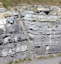 Section of the Gloucester fault splay at Tunney's Pasture showing the displacement across the fault.  Photo by J. Aylsworth