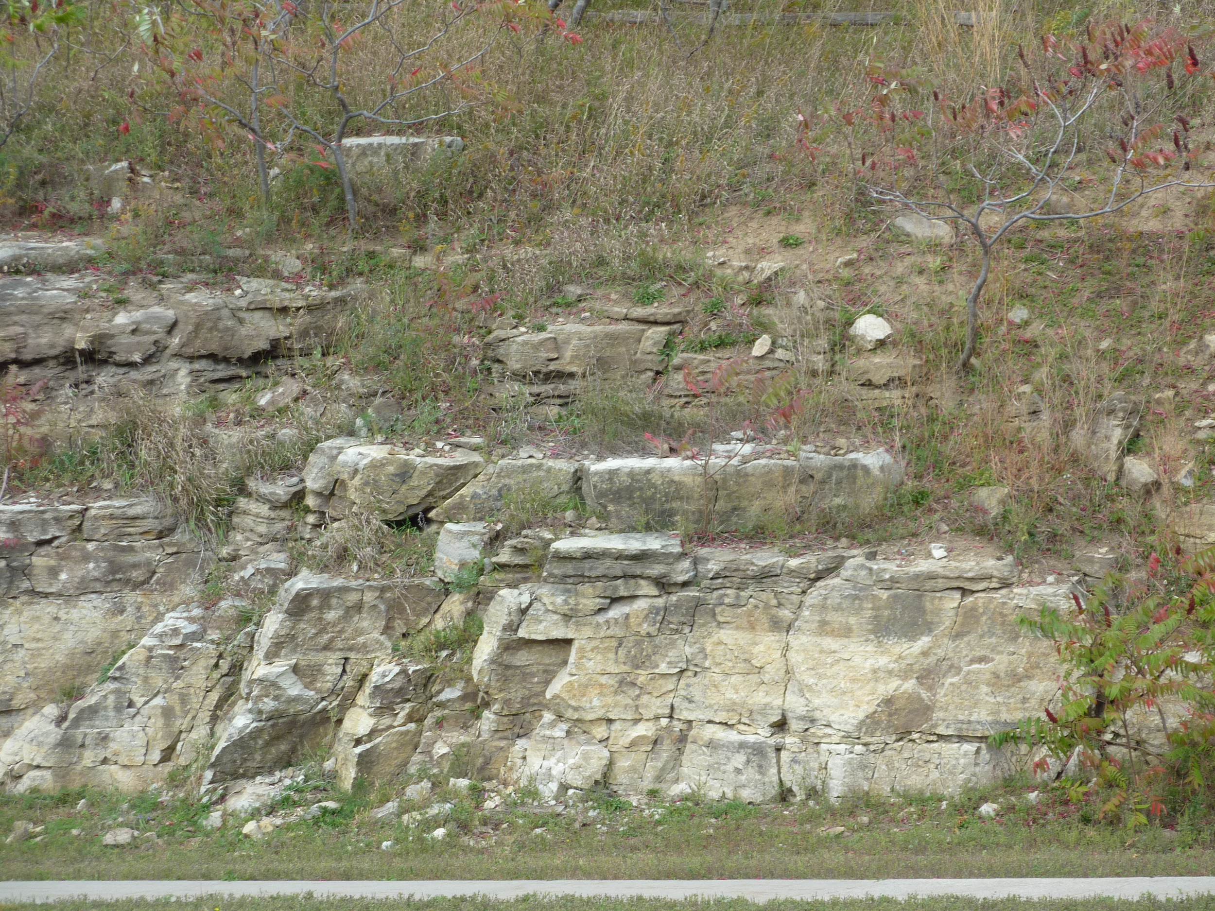 Transition from Nepean Formation sandstone to March Formation dolomite beds (darker), east side of Kanata Dr. at Centrum Plaza.  Photo by Q. Gall