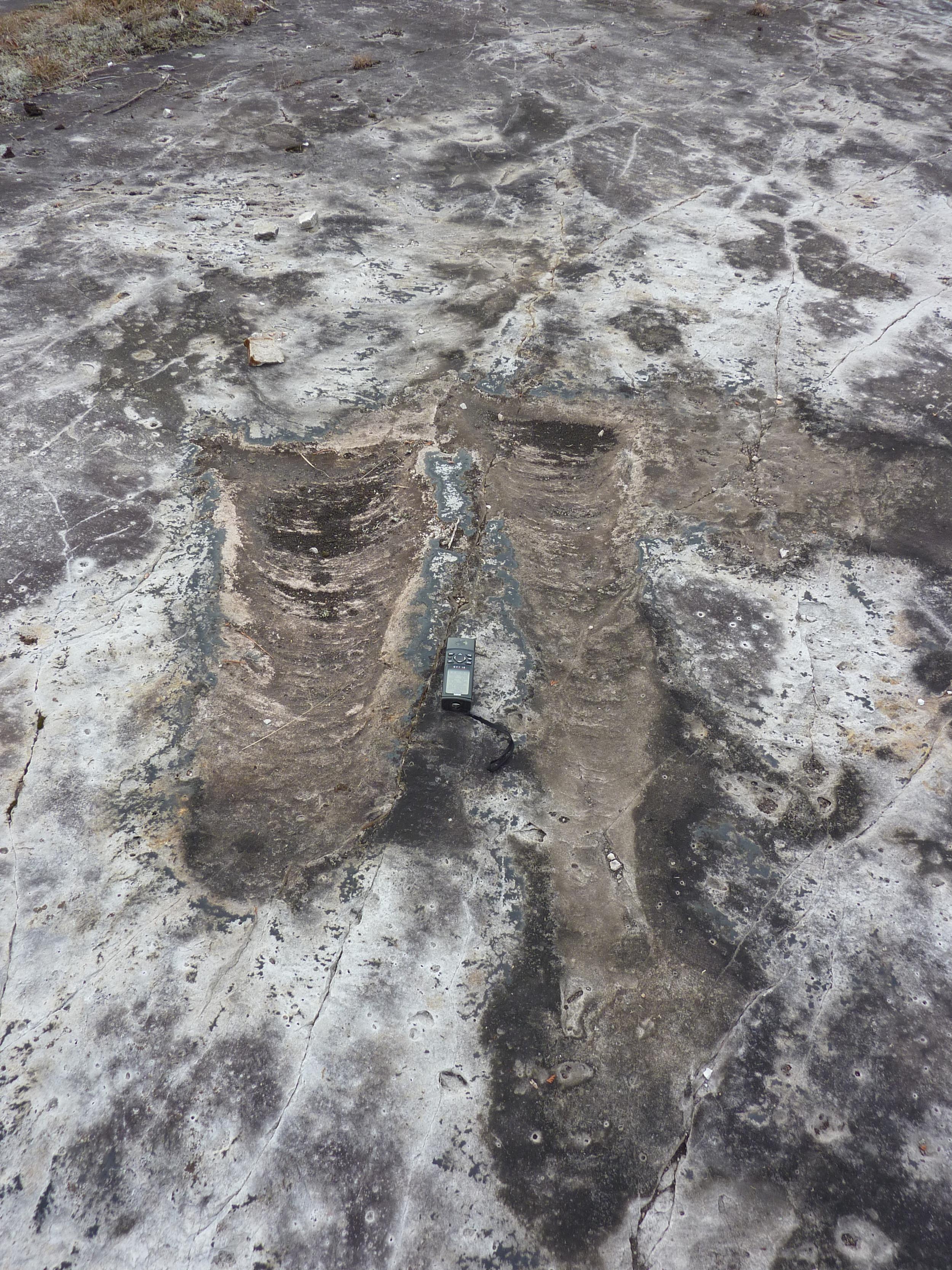 Trough X-strata, Nepean Fm, Rideau Trail