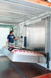 Guest container bed