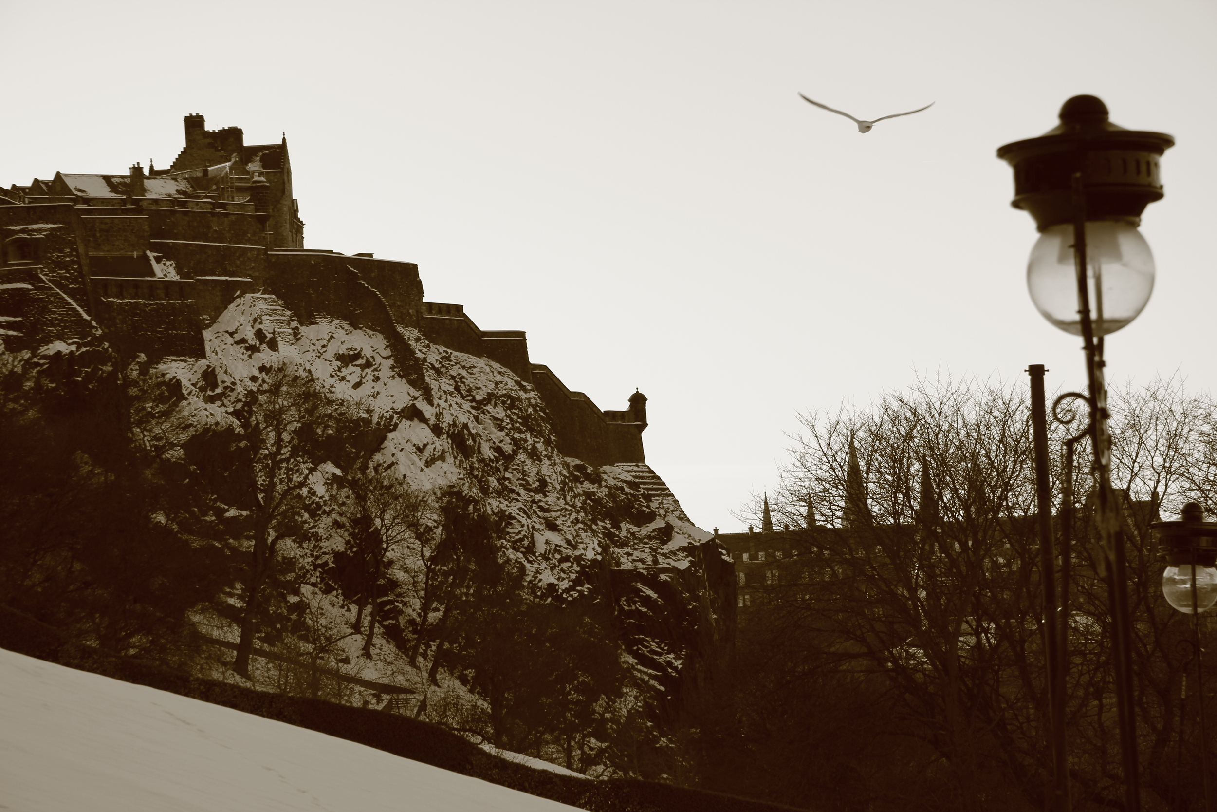 EdnburghEmergencyMedicine-Edinburgh04.JPG