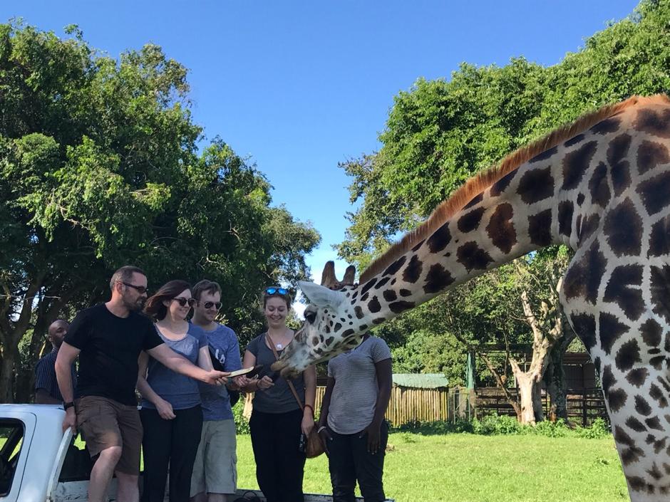 Alasdair, Katy, Ed & Sarah meet one of the giraffes at UWE