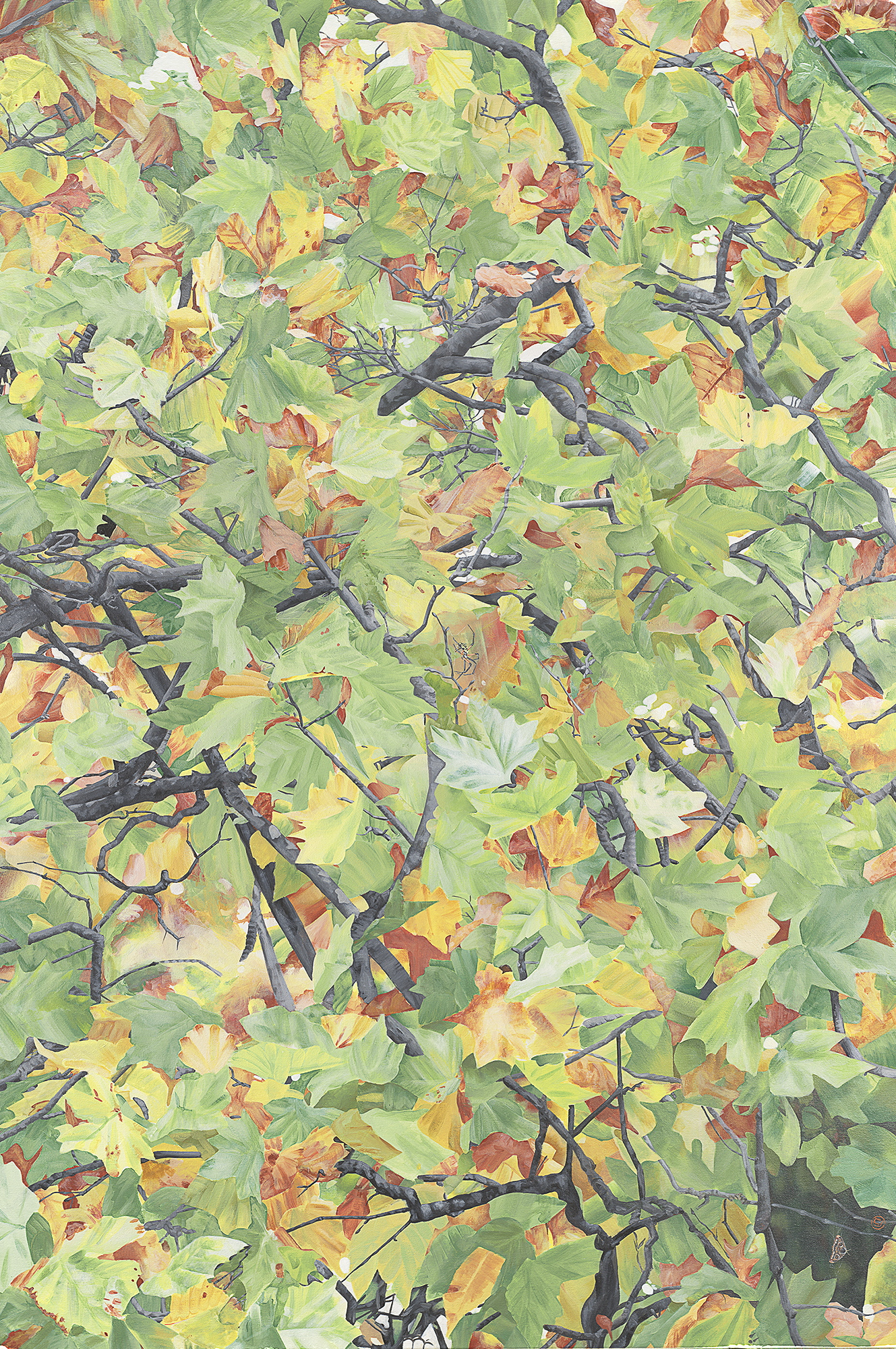 Autumn Tree, (47x70)