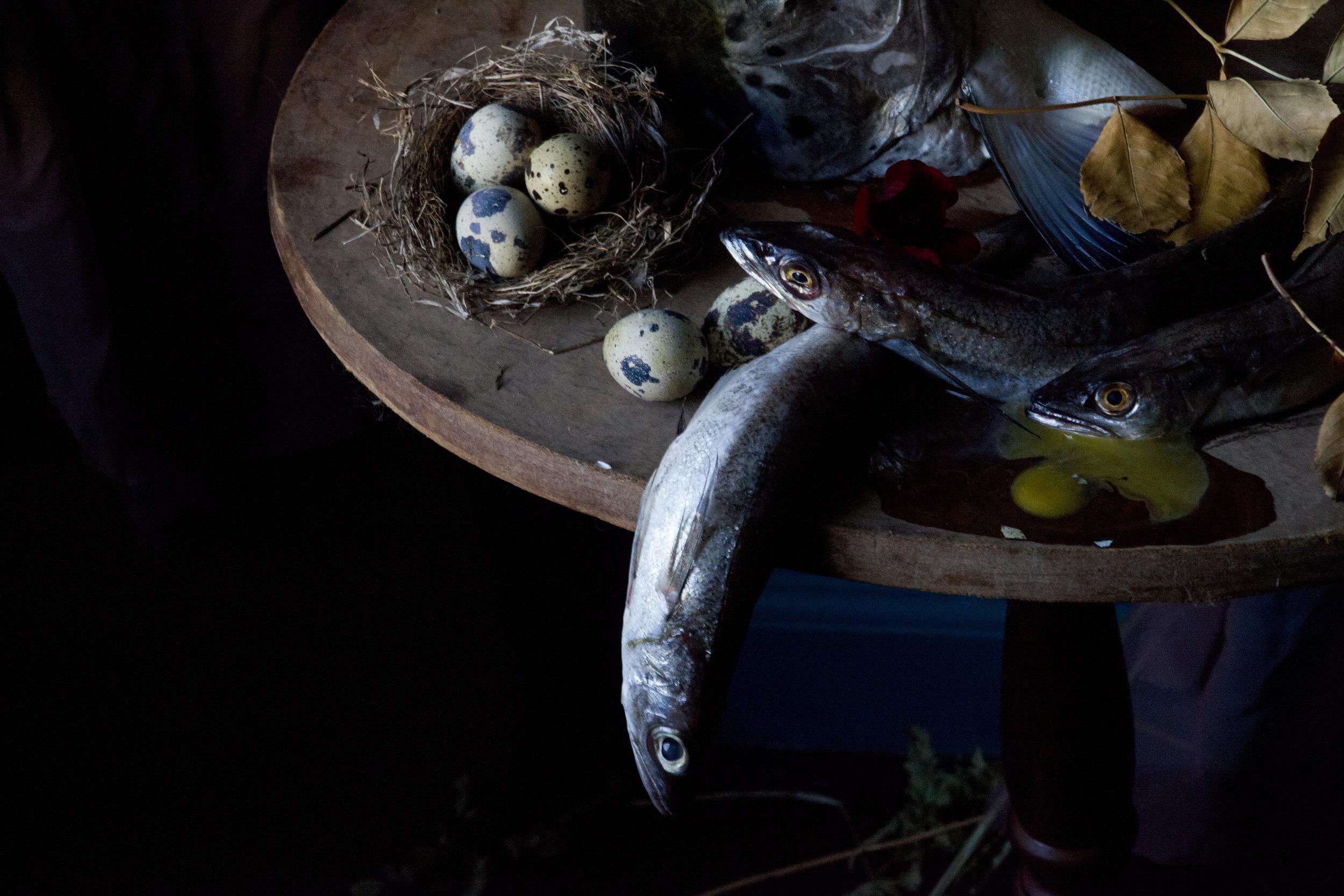 Fish & Quail Eggs