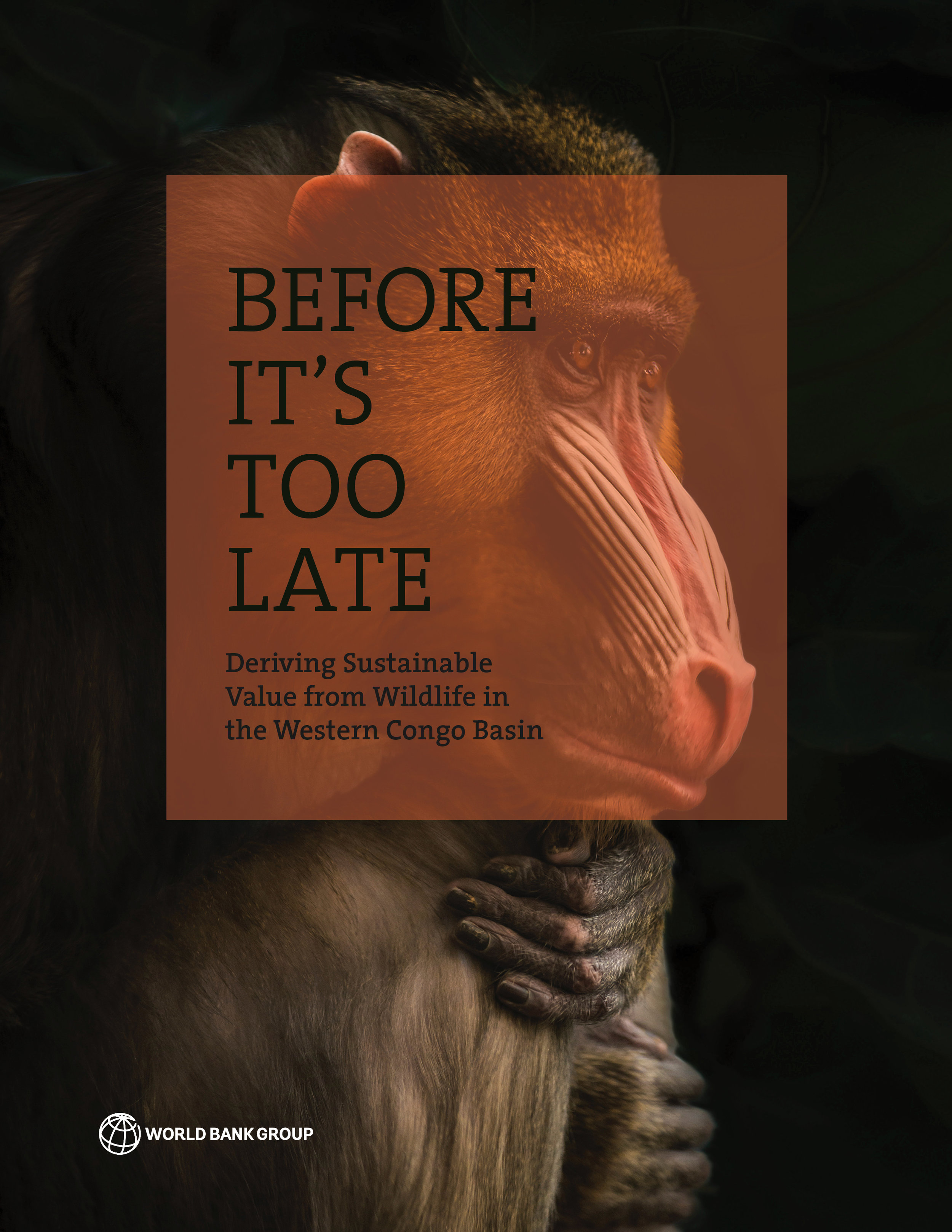 Before it's too late - Cover.jpg