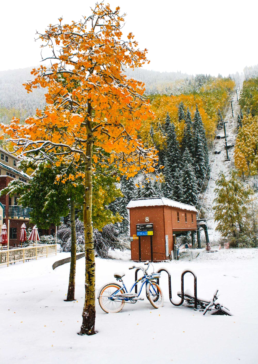 We like to tell stories. Here's ours… - Chair 8 Media started back in the San Juan Mountains of Telluride, Colorado. Yep, there she is in all her glory.