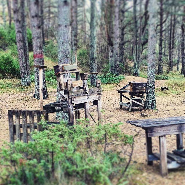 När säsongen är slut och camparna lämnat skogen, står de hemmasnickrade köken kvar i skogen. Som en konstutställning på ett galleri. #naturnäraupplevelser #nordkostersreservat