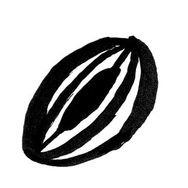fruta3.jpg