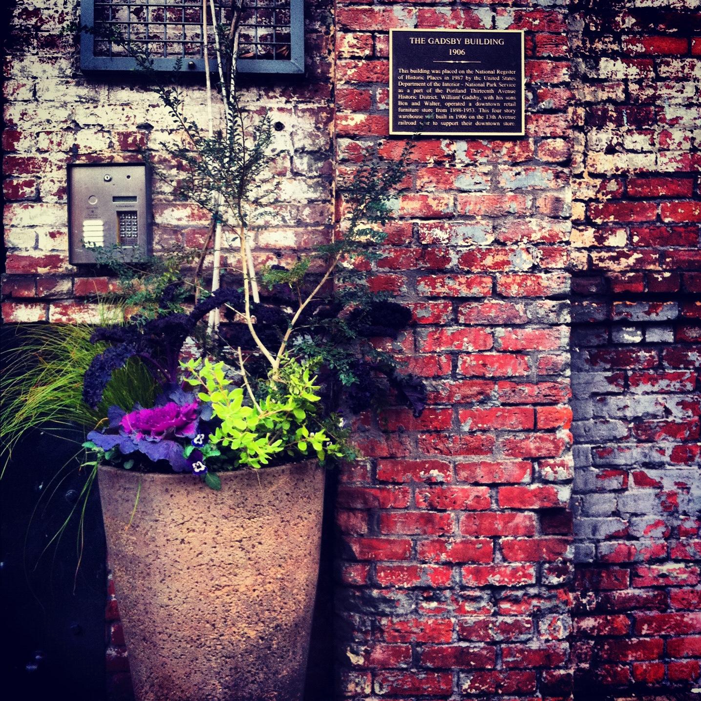Barista, Portland