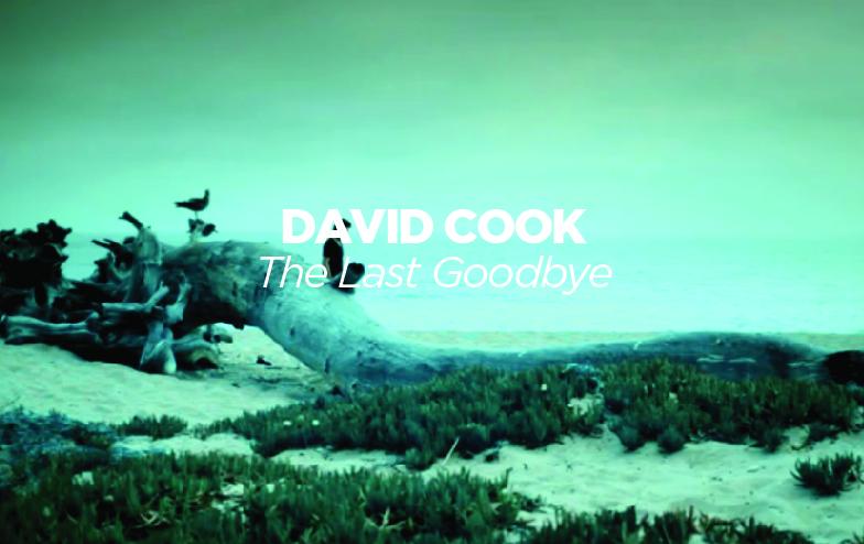 DavidCookthumb-01.jpg