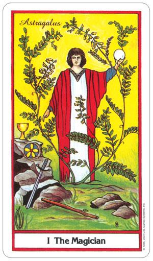 herbal 3.jpg
