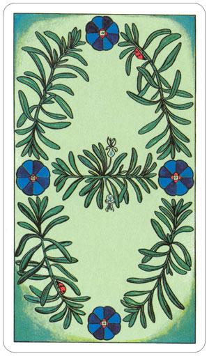 herbal 8.jpg
