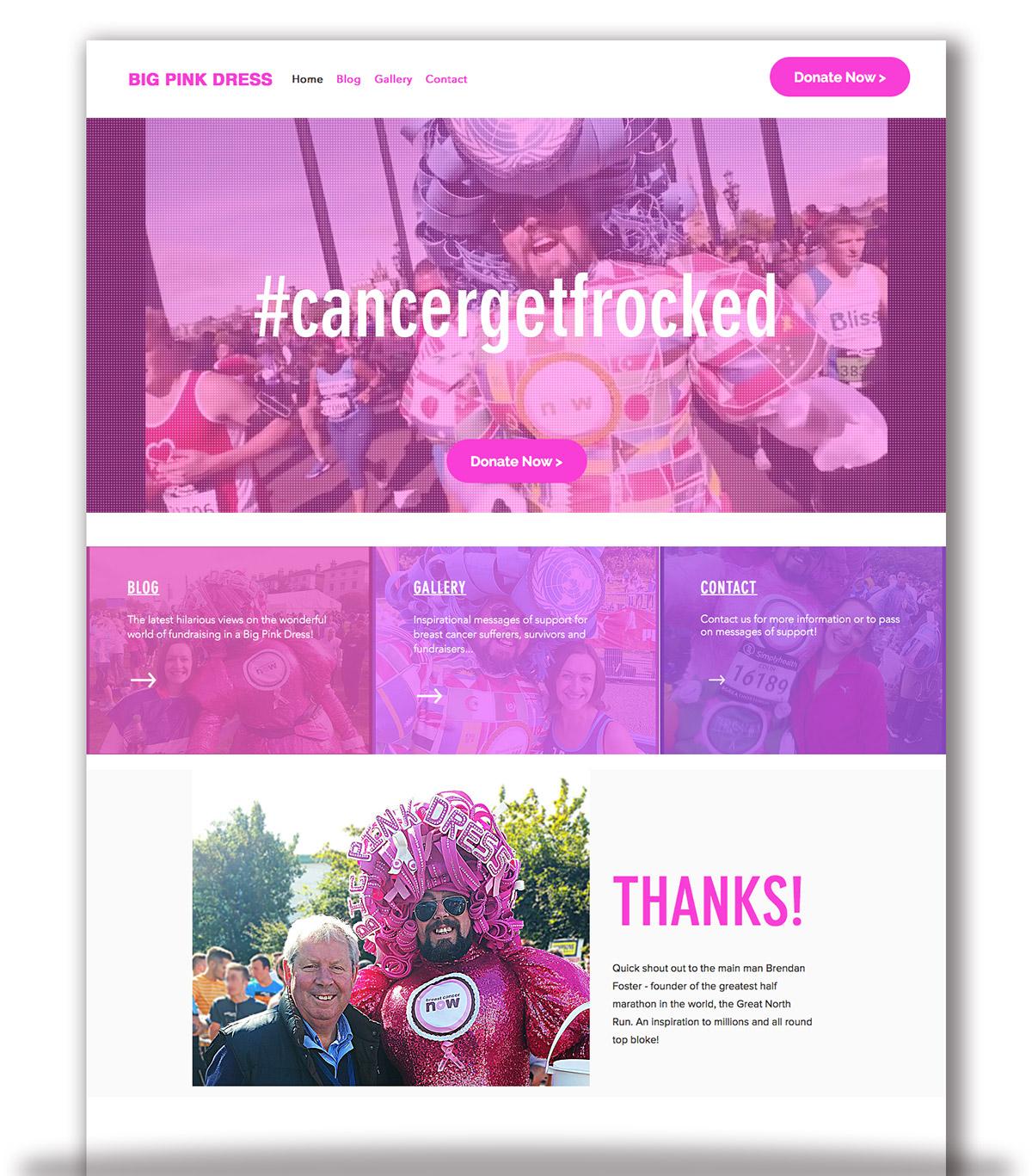 Big Pink Dress - website homepage - THAT Branding Company - Creative Design and Branding Agency in Newcastle and Gateshead.jpg