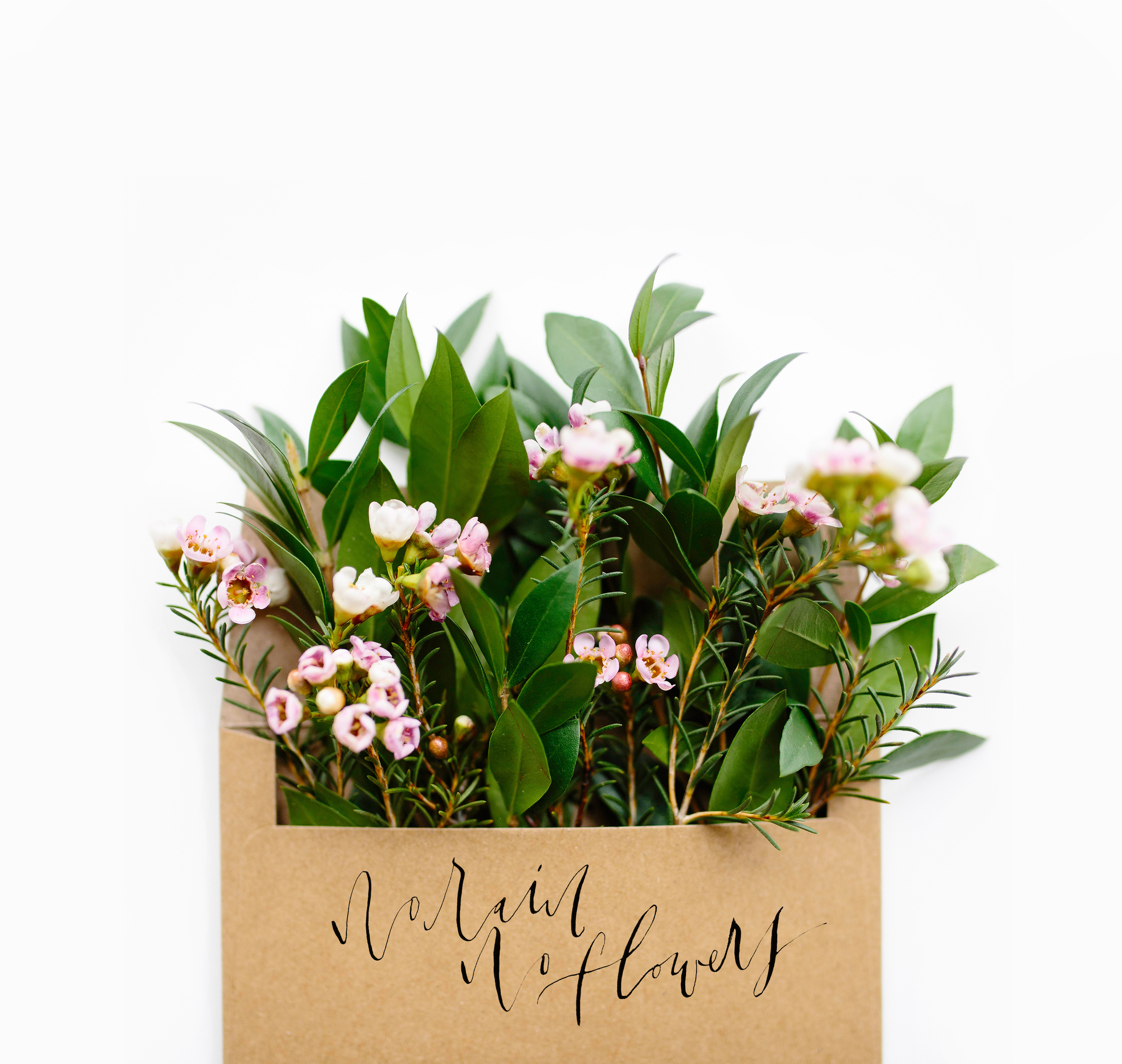 FlowersInMailWithRain2.jpg